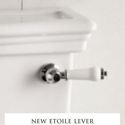 Devon&Devon New Etoile ручка для моноблока + сливной механизм