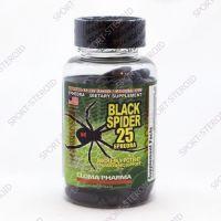 Black Spider ECA 25 - 100 caps (CLOMA PHARMA)