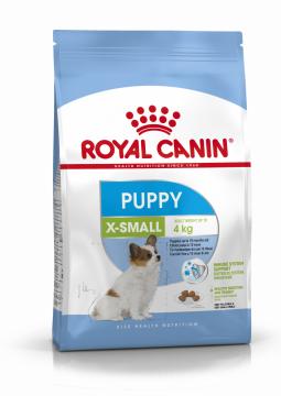 Икс Смолл Паппи (X-Small Puppy)