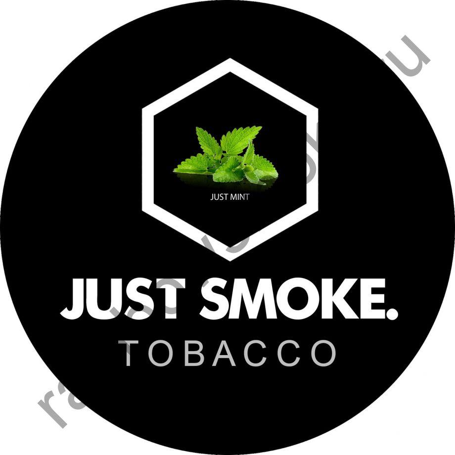 Just Smoke 100 гр - Just Mint (Мята)