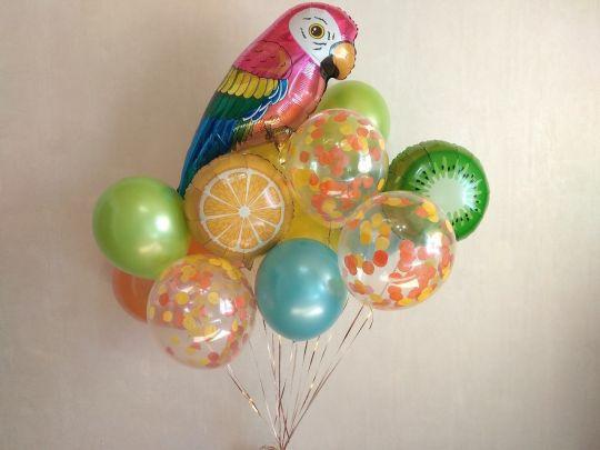 Набор с попугаем