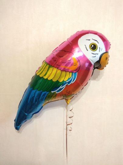 Попугай шар фольгированный с гелием