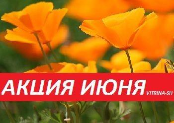 АКЦИЯ ИЮНЯ -30 % (с 21.06.2019 по 30.06.2019)