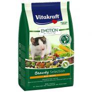 Vitakraft Beauty Selection Корм для крыс всех возрастов (600 г)