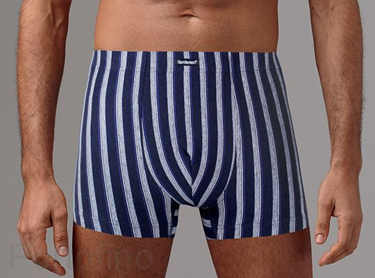 GS-5016 Мужские трусы-шорты Gentlemen
