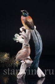 Райские птицы, Karl Ens, Германия, сер. 20 в.