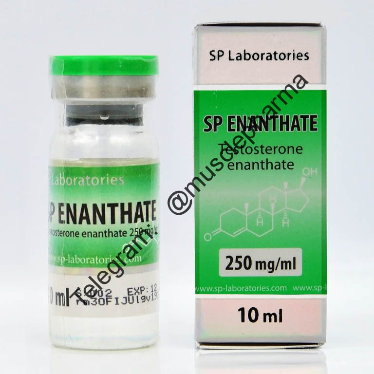 TESTOSTERON ENANTHATE (SP Laboratories). 1 флакон * 10 мл.