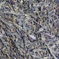 Зеленый чай «Grunewald China Sencha Tangli /organic», 250 гр.