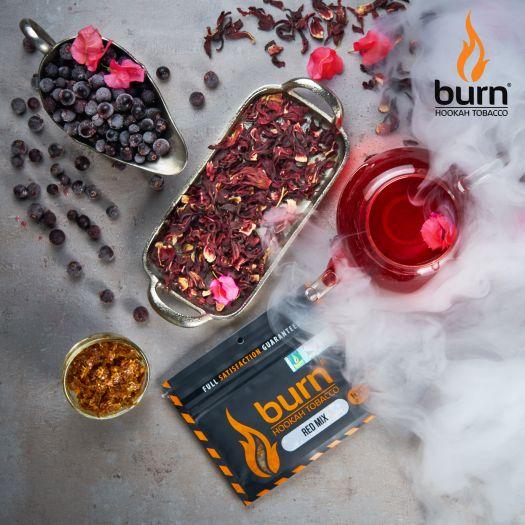 Табак Burn - Red Mix (Каркаде и чёрная смородина) 100 гр