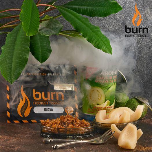 Табак Burn - Guava (Гуава) 100 гр