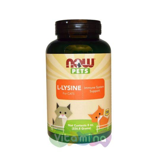 Now Foods Pets Лизин для котов и кошек, 227 гр.