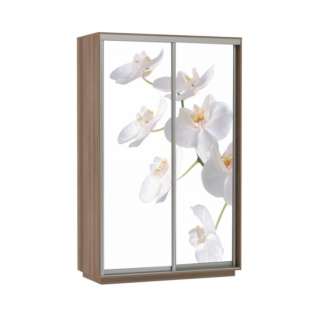 Шкаф-купе Дуо Фото Орхидея