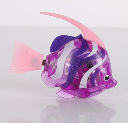 Роборыбка скалярия фиолетовая