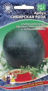 Арбуз Сибирская Роза (Уральский Дачник)