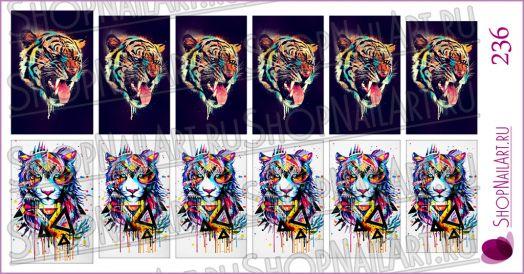 Слайдер-дизайн 236 - Тигры арт.