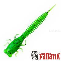 Мягкие приманки Fanatik X-Larva 4'' 100 мм / упаковка 5 шт / цвет: 026