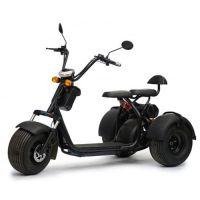 Электро трицикл CityCoco Trike 2000W 20AH