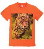 Оранжевая футболка для мальчишек  купить от Bonito kids