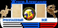 медальница армейский рукопашный бой с полкой