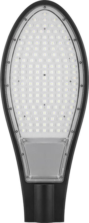 Светодиодный уличный консольный светильник Feron SP2928