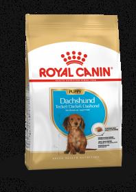 Роял канин Такса Паппи (Dachshund Puppy)