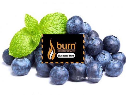 Burn - Blueberry Mint (свежий черничный вкус с мятой)