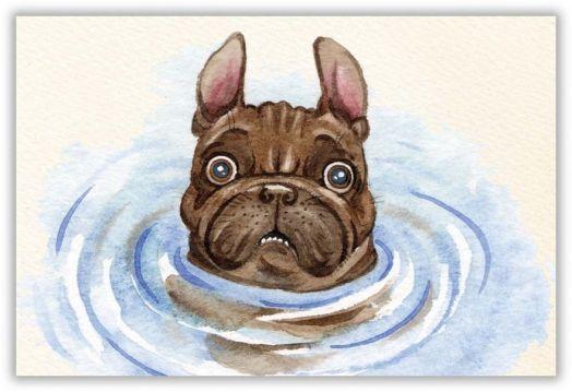 Я не умею плавать!