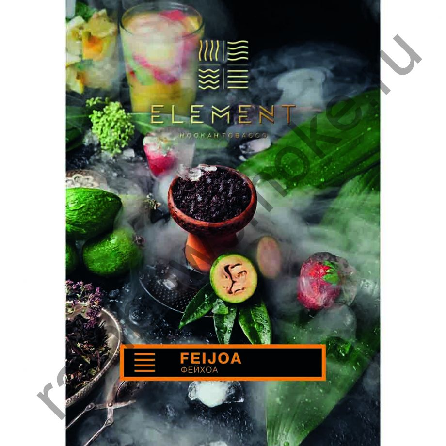 Element Земля 40 гр - Feijoa (Фейхоа)