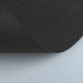 """Бумага для пастели 210 х 297 мм, Lana """"Lana Colours"""", 1 лист, 160 г/м?, чёрный"""