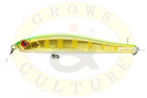 Воблер Grows Culture Rige 90F 90мм/  9,5гр/ цвет:  858R