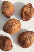 Урюк шоколадный крупный. Урожай 2018. Таджикистан.
