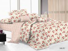 Комплект постельного белья Поплин  PC  семейный  Арт.41/100-PC