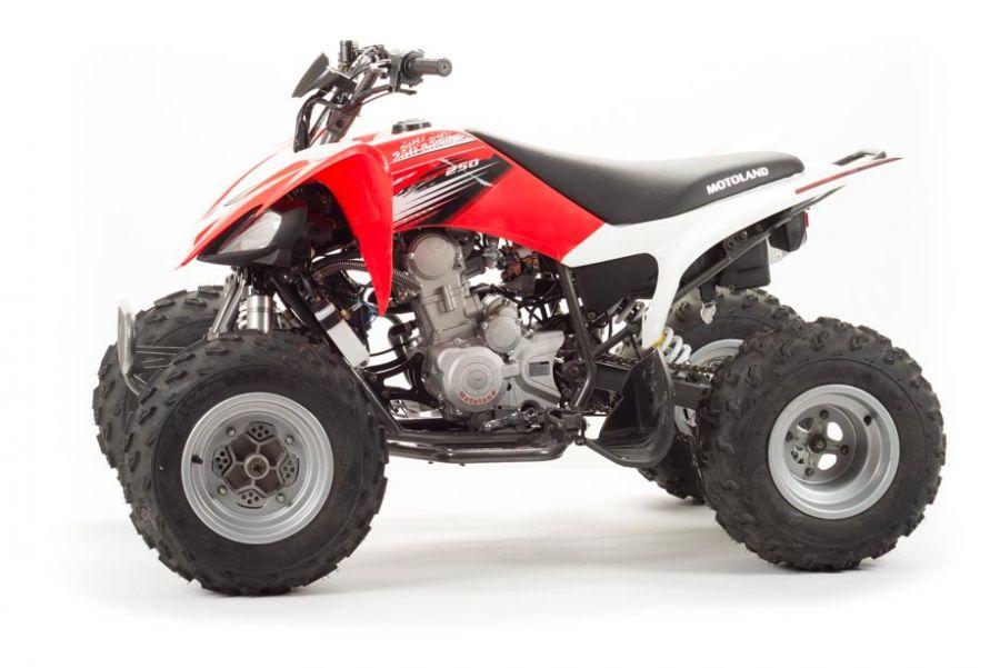Квадроцикл детский 250S
