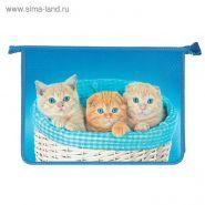 Папка для труда А4 «Котята в корзинке», молния сверху, 3D объёмный рисунок 4501110 (арт. 31Тр45)