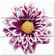 Composicion Flowers