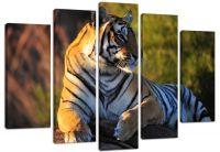 Модульная картина Взгляд тигра