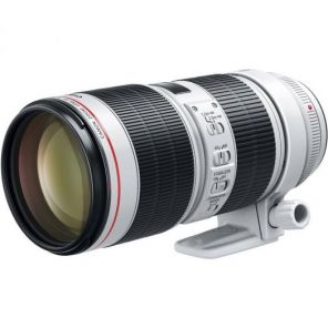 Объективы. Canon EF 70-200mm f/2.8L IS III USM