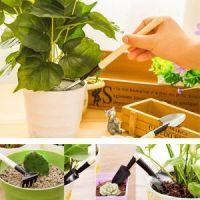 Мини-инвентарь для комнатных растений, 3 предмета (3)