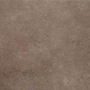 Дайсен Керамогранит коричневый обрезной SG610500R 60х60