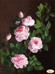ТК-075. Розовая Ветвь. А3+ (набор 1300 рублей) Tela Artis