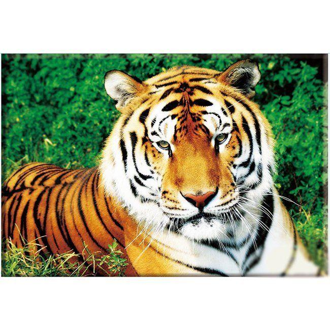 Набор ДТ Алмазная живопись Тигр 40*30см DA-0183