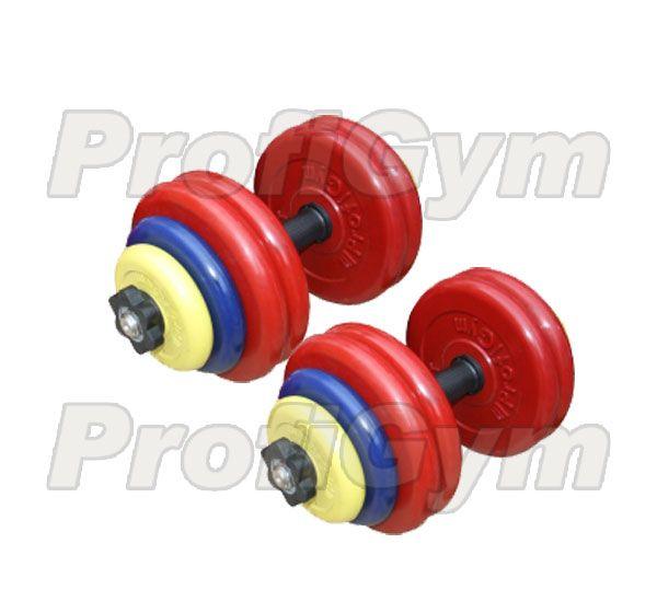 ГРЦ-30 Гантель разборная 30 кг цветная