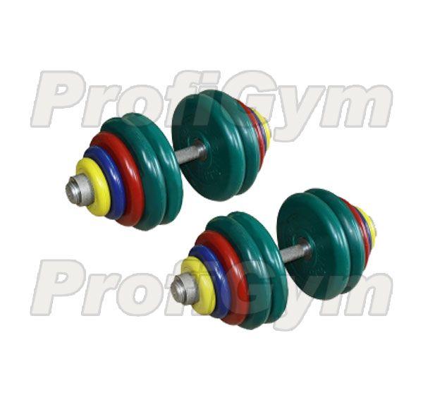 ГРЦ-65 Гантель разборная 65 кг цветная