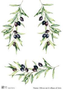 Olives set 4