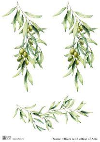 Olives set 5