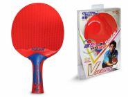 Всепогодная ракетка для настольного тенниса DOUBLE FISH–V3