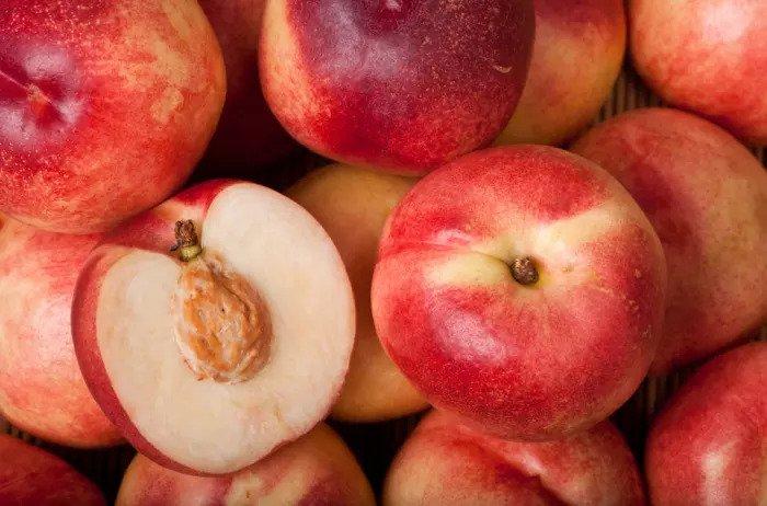 саженцы яблочного нектарина  отправка с 1 сентября2020г