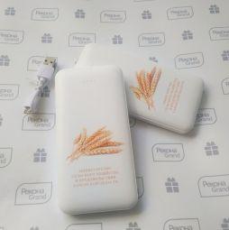 внешние аккумуляторы с логотипом в самаре
