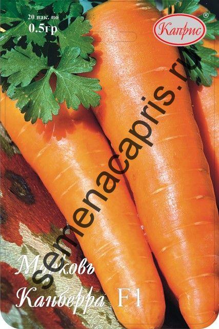 Морковь Канберра F1 (Нидерланды)