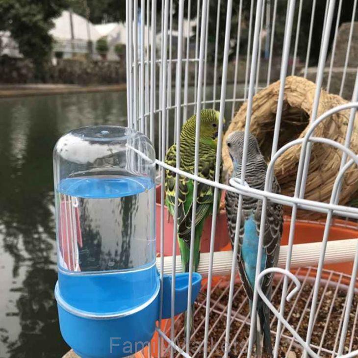 Автопоилка для птиц в клетку с вертикальными прутьями, 60 мл